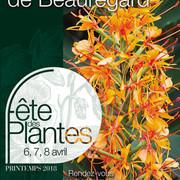 Fête des plantes de Printemps à Saint Jean de Beauregard