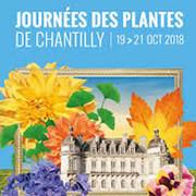 Journées des plantes de Chantilly 19 – 21 octobre 2018
